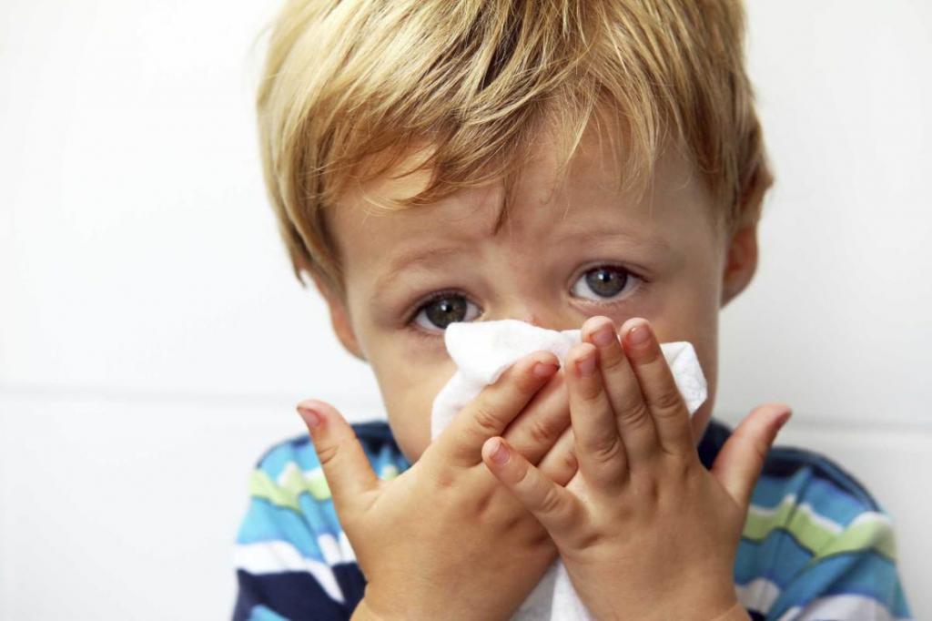 Лечение насморка народными средствами - как быстро избавиться от ринита?