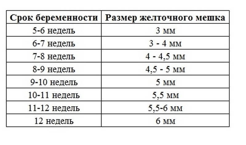 Желточный мешок при беременности: таблица нормальных размеров по неделям на ранних и поздних сроках