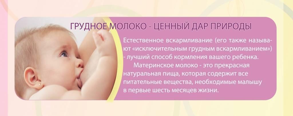 Правила выживания для кормящих мам. часть 1. все о грудном вскармливании
