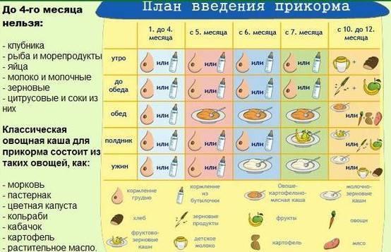 Таблица введения прикорма ребенку до года при грудном или искусственном вскармливании - medside.ru