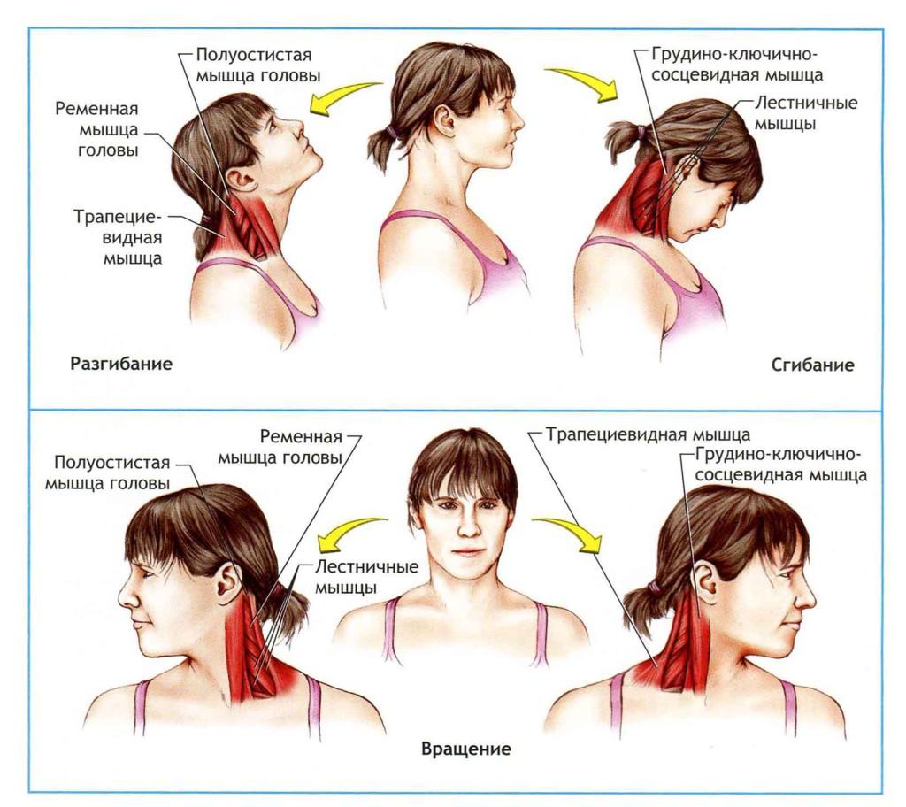 Боли в шее у ребенка: наиболее распространенные причины