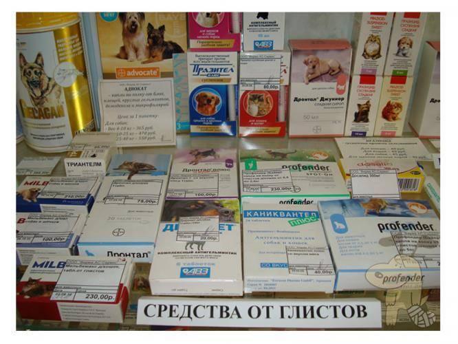 Глисты у детей - симптомы, лечение, признаки, профилактика, лекарства