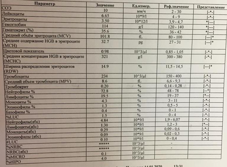 Как расшифровать анализ крови на мононуклеоз