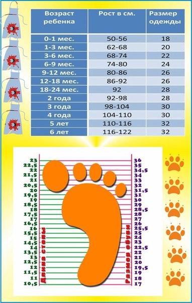 Размер одежды для новорожденных по месяцам | уроки для мам