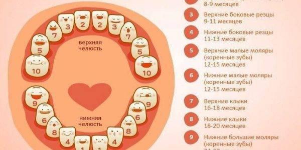 Как понять, что у ребенка режутся зубы, симптомы появления зубов, фото стадий процесса, как облегчить состояние ребенка