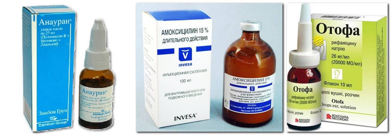 Антибиотики при отите у детей: когда назначаются антибактериальные препараты