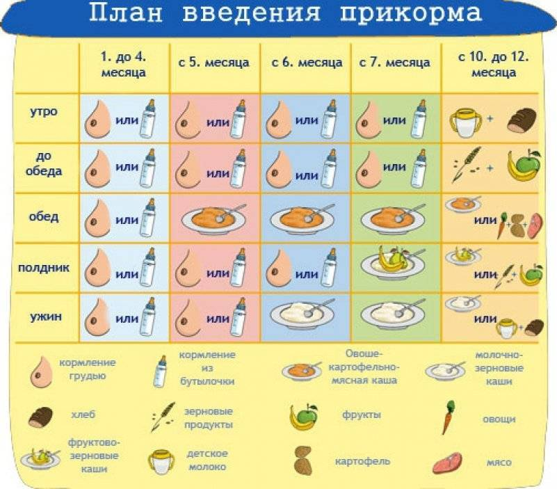 C какого возраста можно давать банан ребенку: правила ввода в прикорм, ограничения
