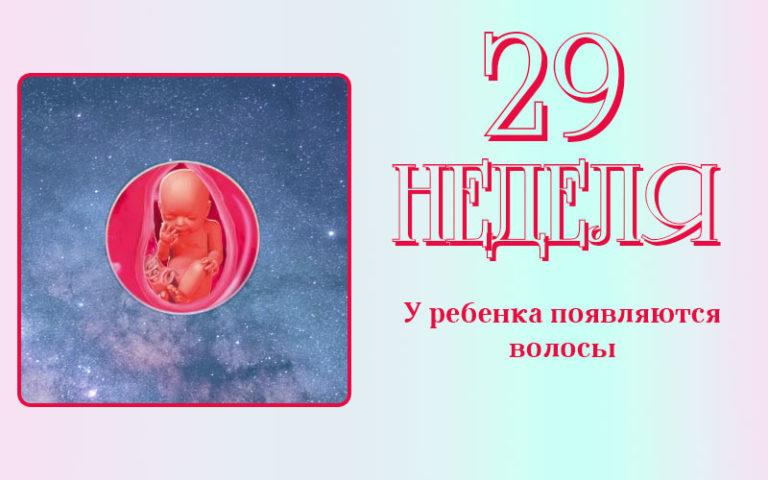 29 неделя беременности: что происходит с малышом и мамой, фото, развитие плода
