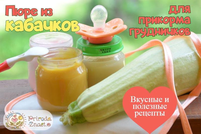 Пюре из кабачков для грудничка — первая еда для малыша
