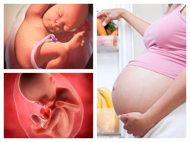 30 неделя беременности | уроки для мам