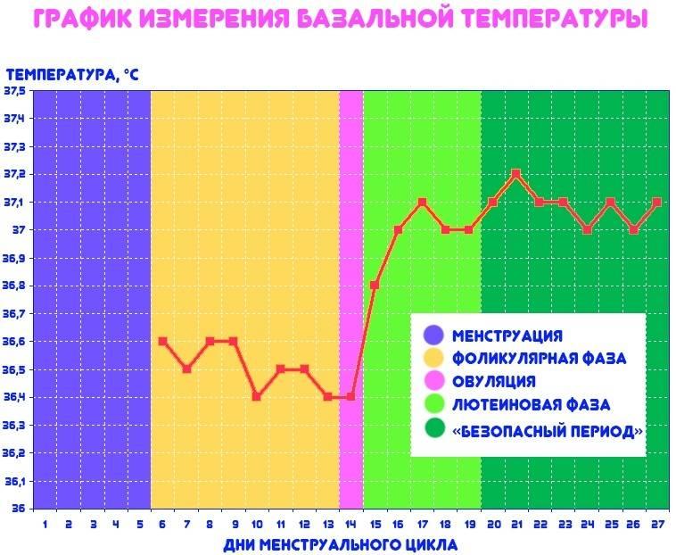Базальная температура при беременности на ранних сроках | уроки для мам
