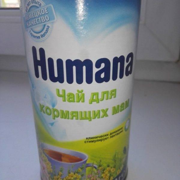 Чай для лактации: помогает ли напиток увеличить объёмы молока