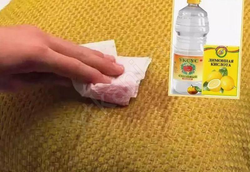 Как вывести запах мочи с ковра – эффективные способы
