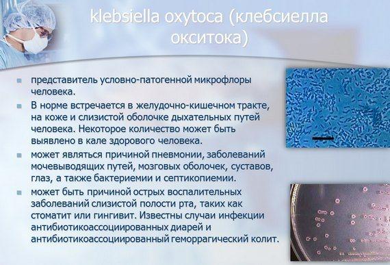 Клебсиелла у грудничка: симптомы и лечение