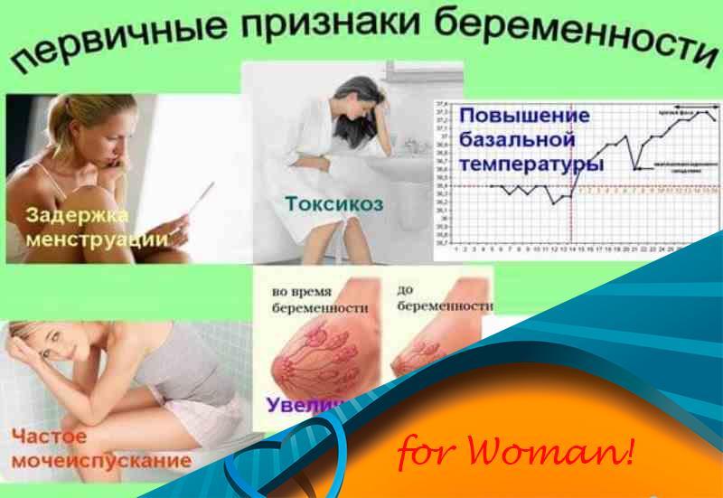 Первые признаки беременности: ранние симптомы на первых неделях / mama66.ru