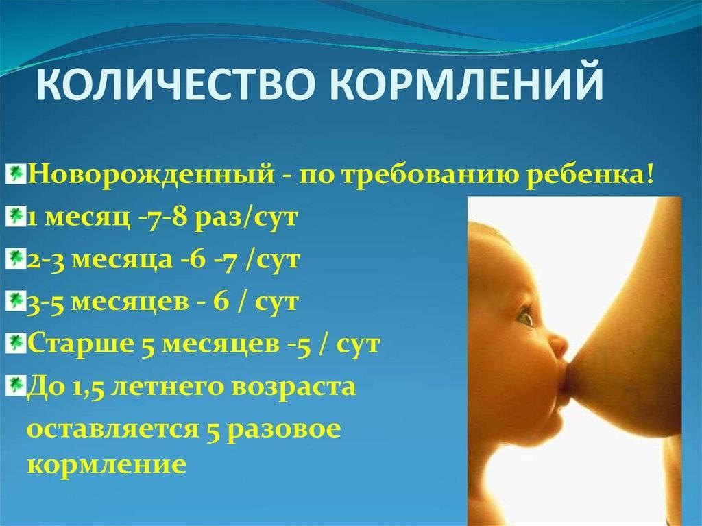 Как отучить ребенка от ночного кормления, когда нужно начинать это делать, мнение доктора комаровского