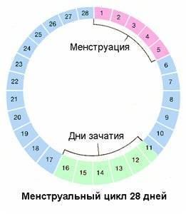 Сбой месячных: основные причины / mama66.ru