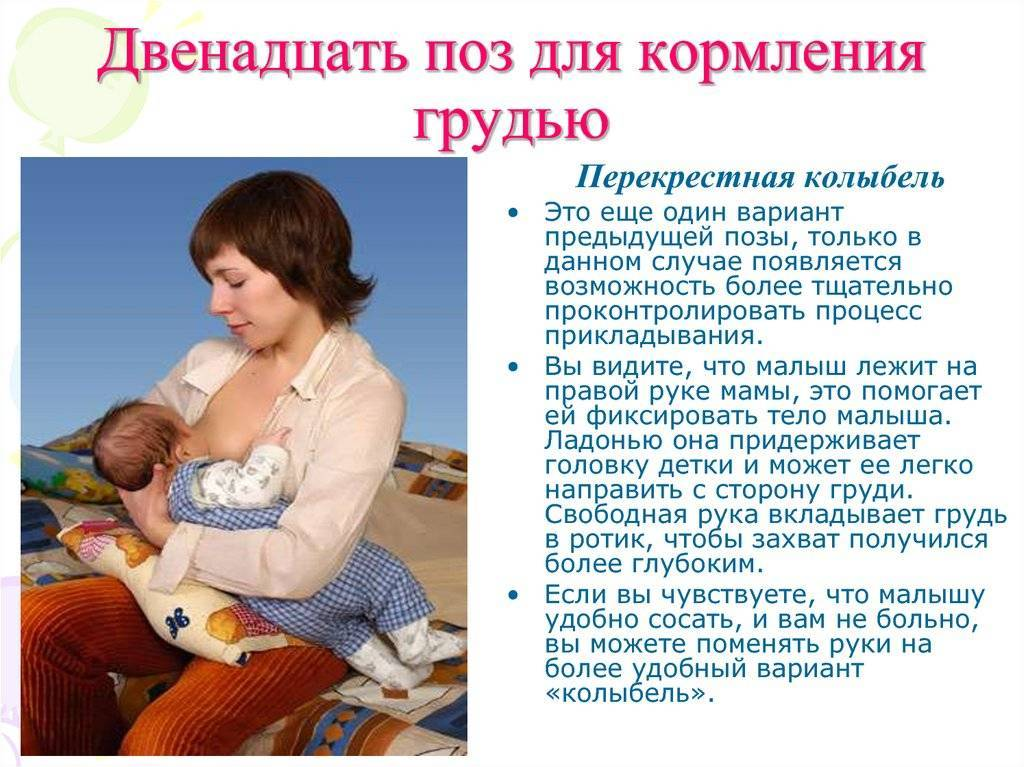 Позы для кормления новорожденных грудью: как кормить ребенка грудным молоком   lisa.ru