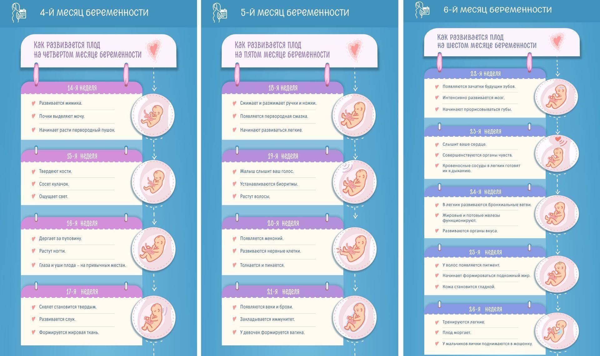 Беременность на ранних сроках - симптомы что надо знать
