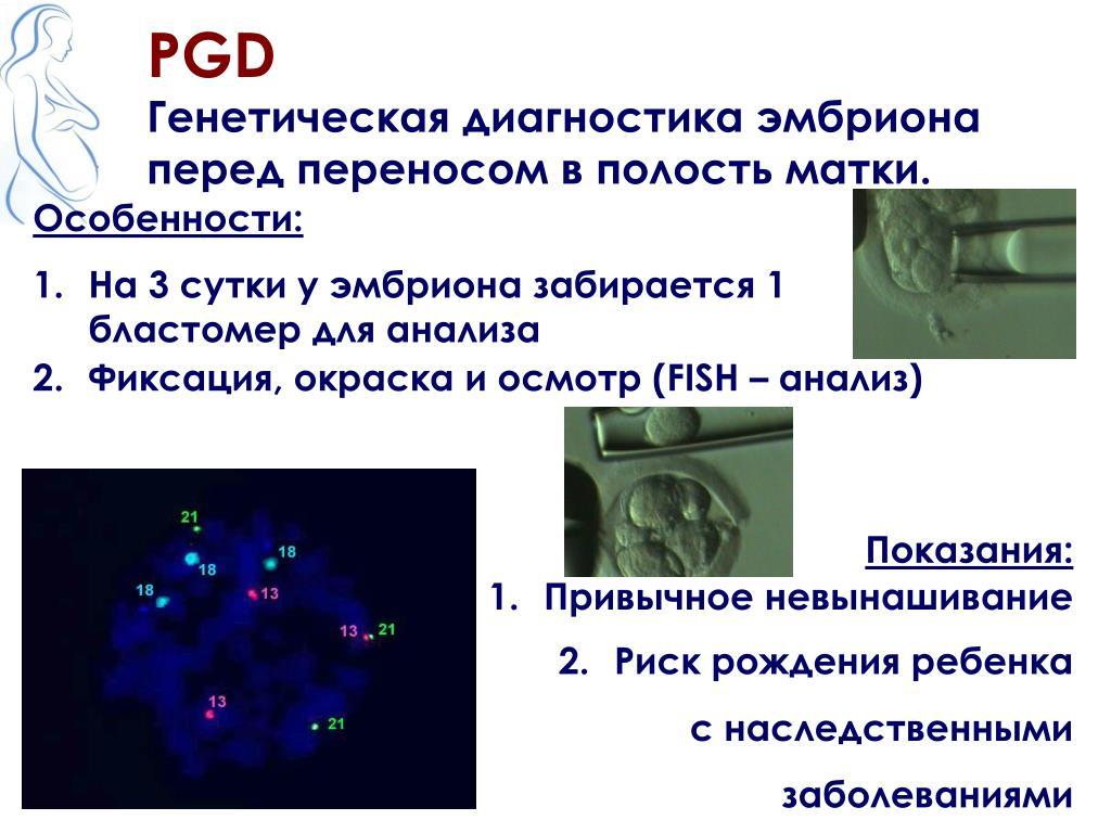 Предимплантационная  генетическая  диагностика эмбрионов. - страна мам