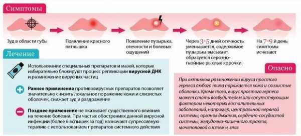 Герпес при беременности 3 триместр: лечение