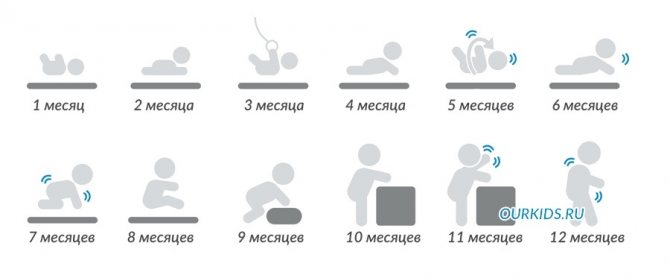 Развитие ребенка в 8 месяцев: что должен уметь делать, рост