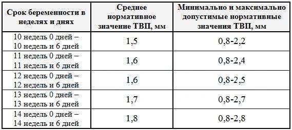 Таблица с нормами толщины воротникового пространства в 12-13 недель беременности: