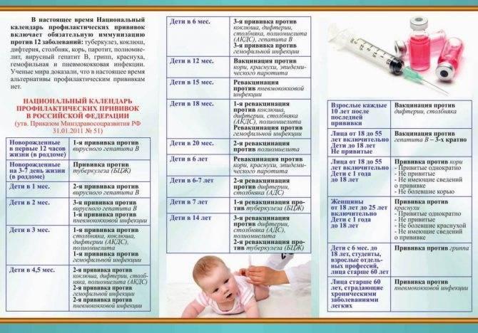 Всё про прививку от кори для взрослых