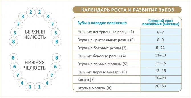 Температура при прорезывании зубов: сколько держится и чем сбить / mama66.ru