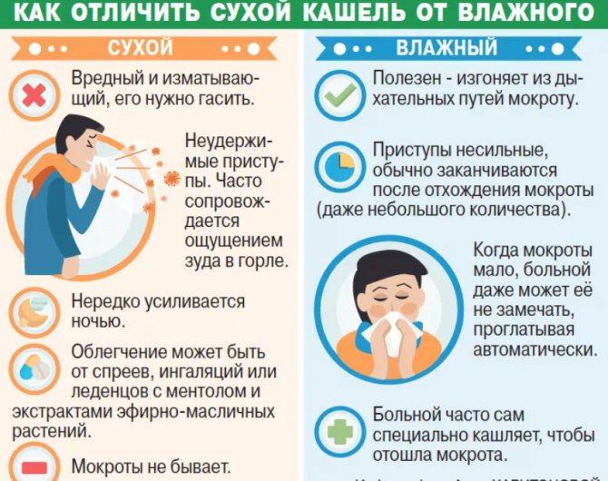 Как вывести мокроту у грудничка - проверенные способы pulmono.ru как вывести мокроту у грудничка - проверенные способы