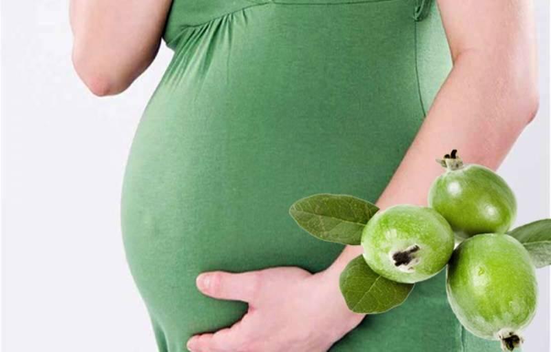 Курага при беременности: польза или вред?