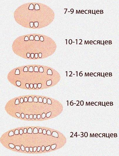 С чем связана температура при прорезывании зубов у детей?