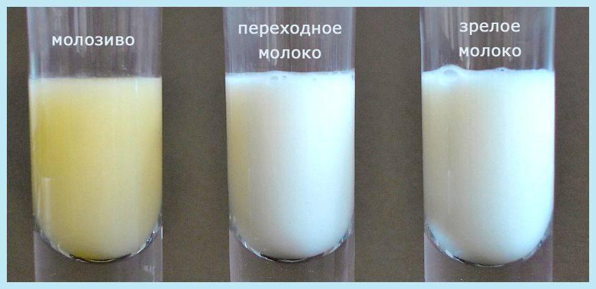 Когда придет молоко? налаживаем лактацию. на какой день появляется молоко после родов