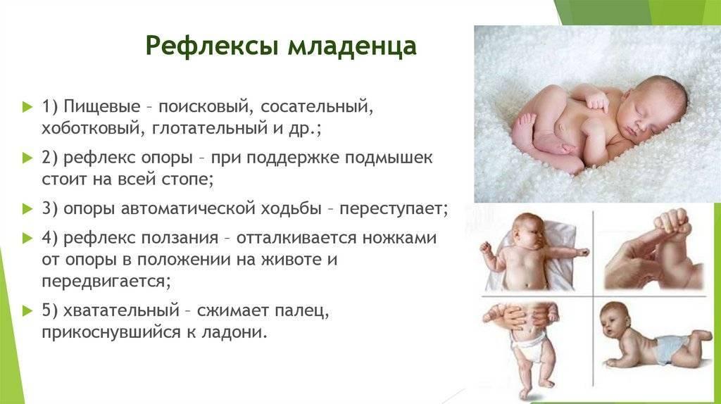 Основные рефлексы новорожденных детей: безусловные и условные рефлексы