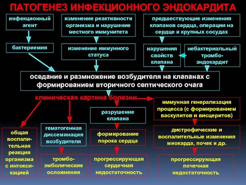 Симптоматика и терапия инфекционного эндокардита