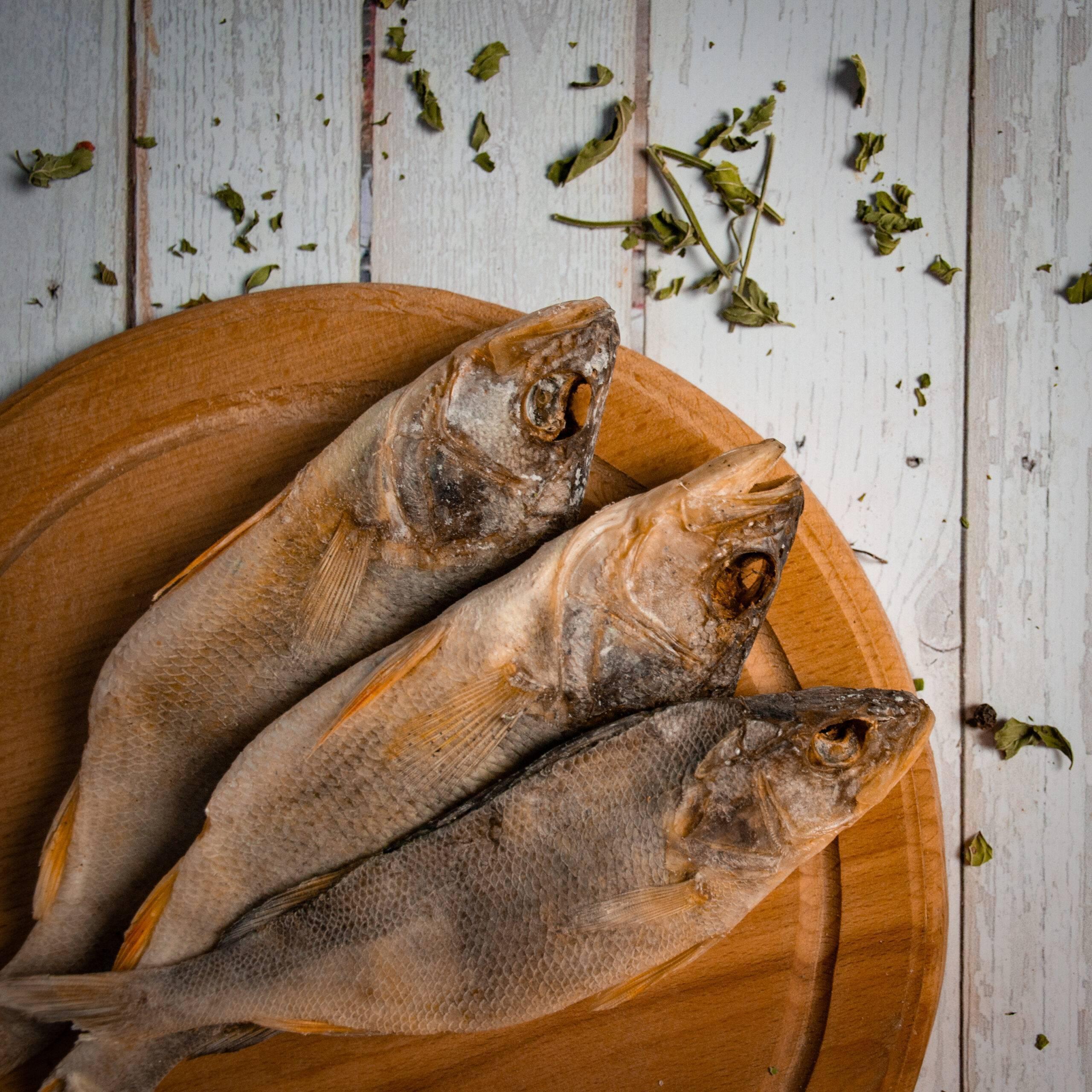 Польза и вред рыбы при грудном вскармливании