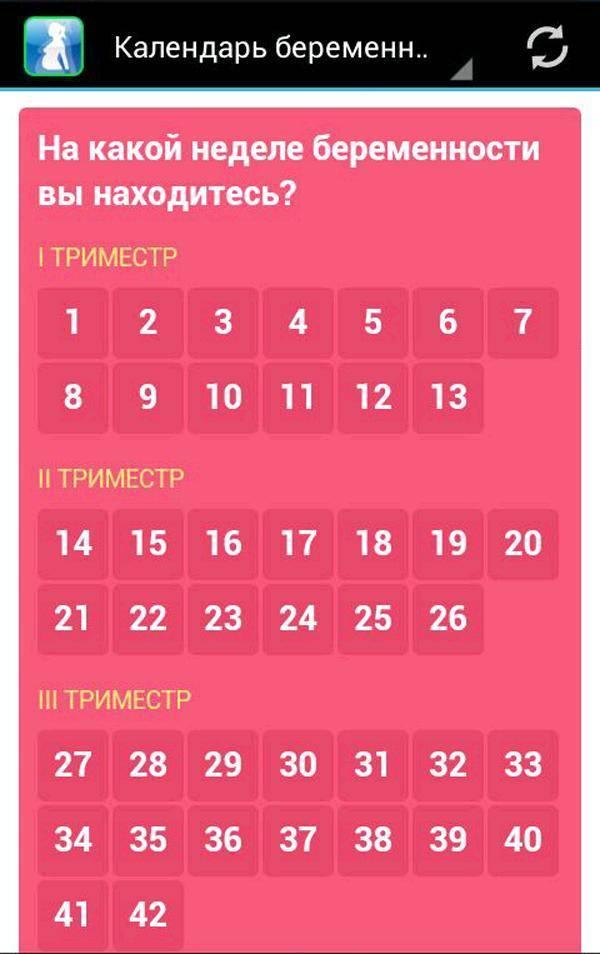 Календарь беременности онлайн