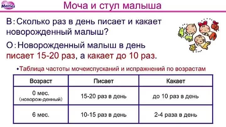 Сколько раз в день должен какать здоровый новорожденный ребенок: нормы частоты стула по месяцам