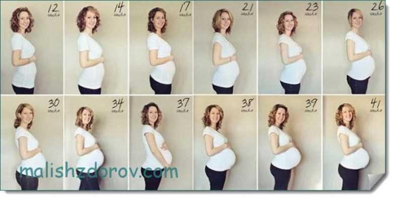 Беременность: если живот очень большой. как растет живот во время беременности