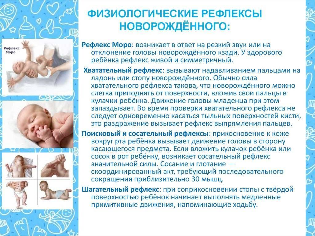 Инстинкты и рефлексы, которыми обладает новорожденный. главная российская книга мамы. беременность. роды. первые годы
