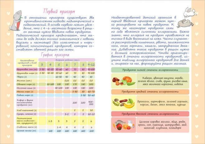 Введение прикорма (основные принципы)