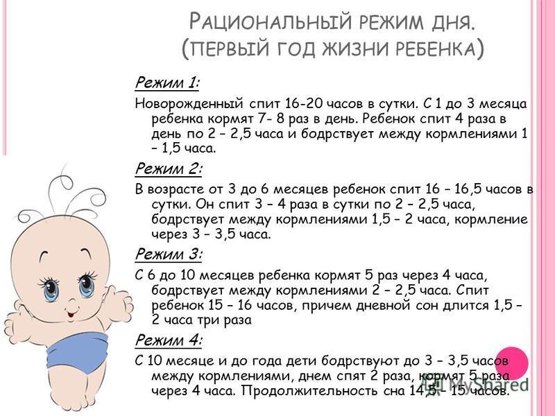 Режим дня ребенка в 8 месяцев по часам, таблица на гв и искусственном вскармливании