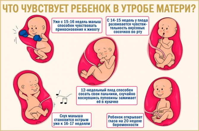Е. комаровский: ребенок потеет во сне - причины, почему сильно потеет голова, когда засыпает
