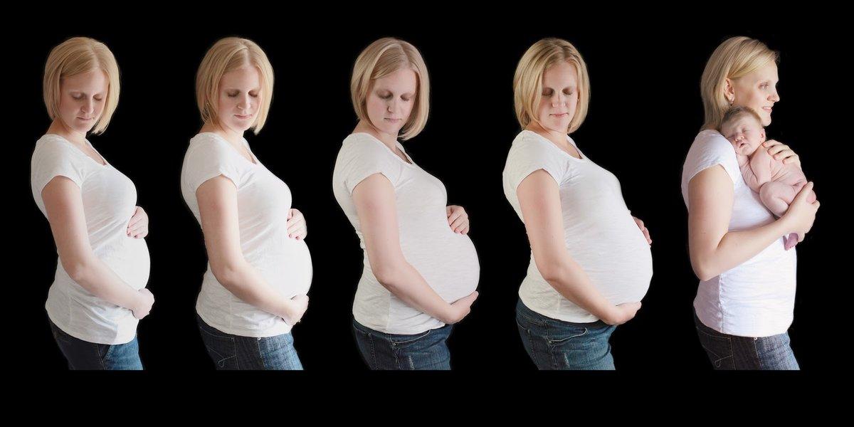 Как быстро растет живот при беременности - большой живот на ранних сроках, причины как быстро растет живот при беременности - большой живот на ранних сроках, причины