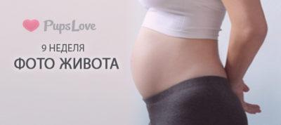 9 неделя беременности: ощущения,  развитие плода