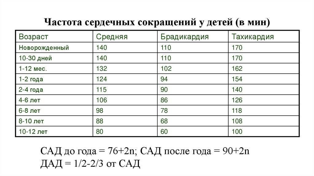 Пульс у детей по возрасту: таблица норм от 0 до 18 лет