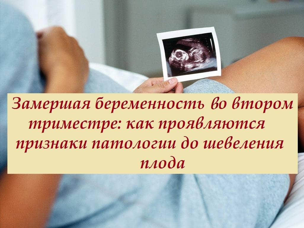 Замершая беременность после эко: причины, симптомы, лечение