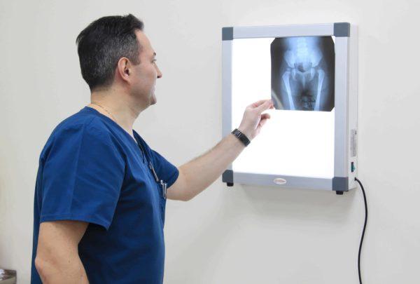 Рентген при беременности / mama66.ru