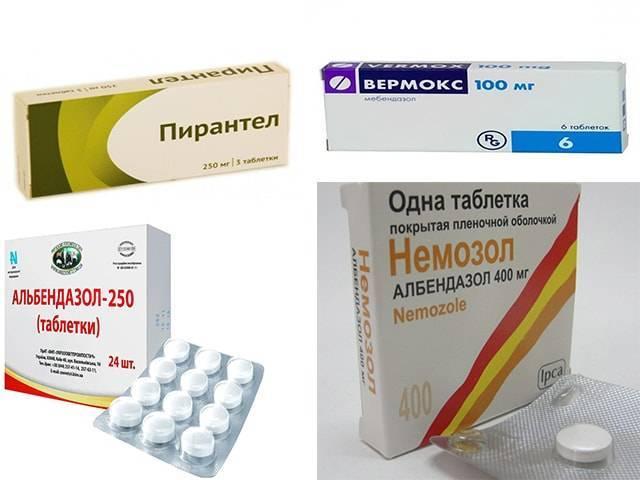 Симптомы глистов у детей, эффективное лечение и профилактика препаратами и народными средствами