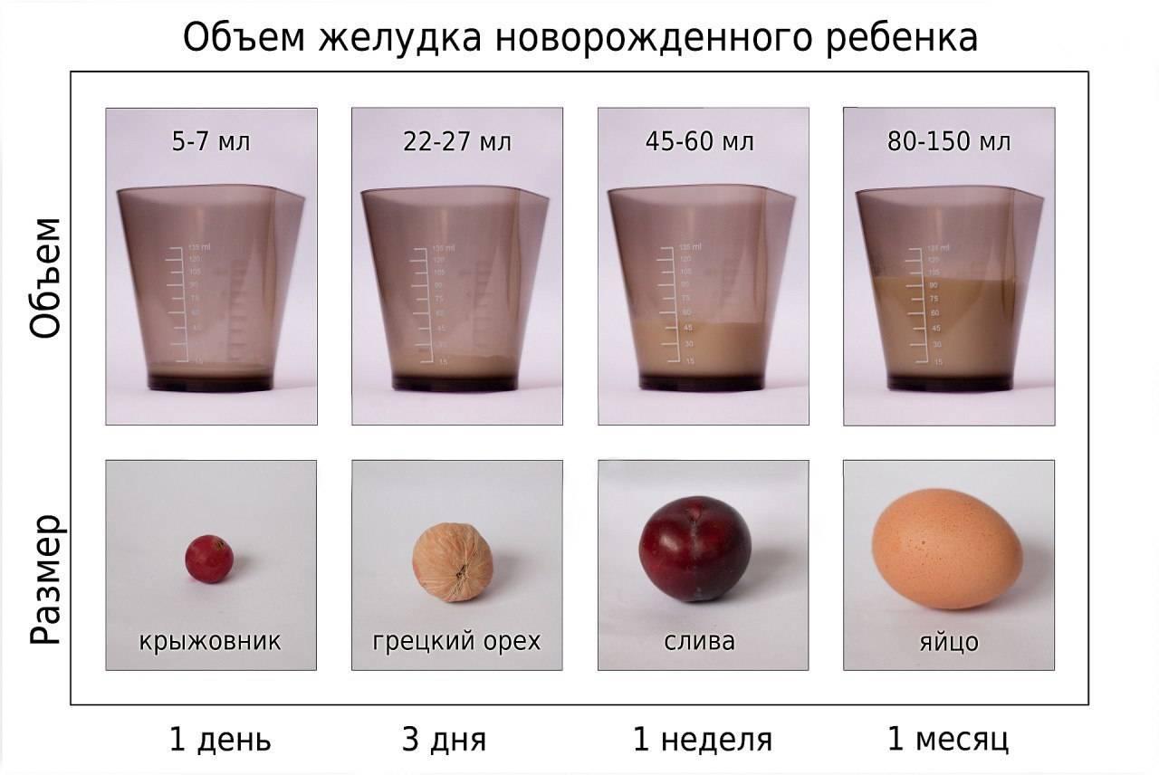 Какая норма молока существует для новорожденного на один прием
